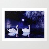 Swan Lake At Midnight Art Print