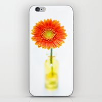 Aglow in Wintertime iPhone & iPod Skin