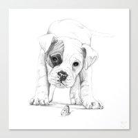 Patch, A Boxer Puppy :: … Canvas Print