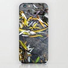 Sirenity Slim Case iPhone 6s