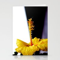 Wet Hibiscus Stationery Cards