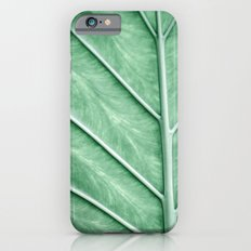 Tropical Leaf Closeup iPhone 6 Slim Case