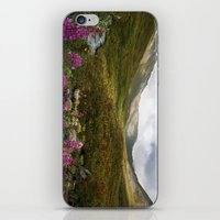 Fireweed & Fall in Alaska  iPhone & iPod Skin