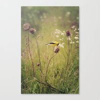 Life in the Meadow Canvas Print