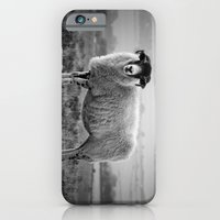 iPhone Cases featuring An Exmoor sheep. by davehare