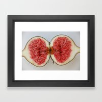 Fig 1 Framed Art Print