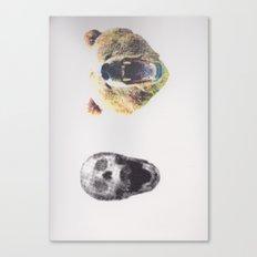 Skullz and Bearz Canvas Print