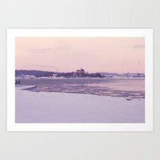 Nordic winter Art Print