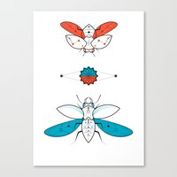Two Insects II Canvas Print
