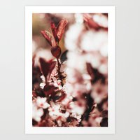Red Leaf Blossom Art Print