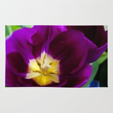 Painted Tulip Rug