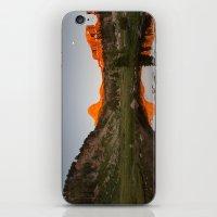 Alpenglow iPhone & iPod Skin