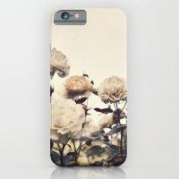 Yellow Rose Garden iPhone 6 Slim Case