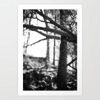 nature's grasp. Art Print
