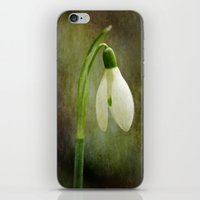 The Productions Of The E… iPhone & iPod Skin