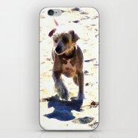 What Shall We Call Him? iPhone & iPod Skin