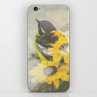 Nesting iPhone & iPod Skin