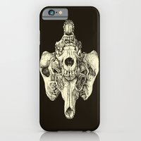 iPhone & iPod Case featuring Coyote Skulls - Black and White by Jason Castillo
