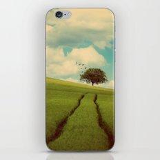 Summer's Day iPhone & iPod Skin