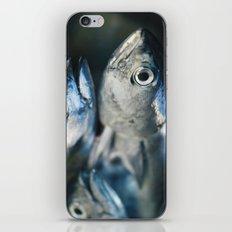 Tuna fish - still life - fine art - photo - print iPhone & iPod Skin