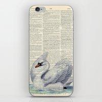 Vintage Swan iPhone & iPod Skin