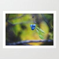 autumn fruit. Art Print