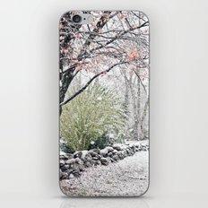 Autumn Snowfall iPhone & iPod Skin