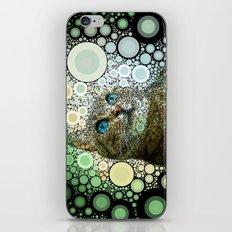 cat dreamy iPhone & iPod Skin