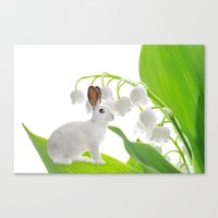 lilly of the valley Canvas Print