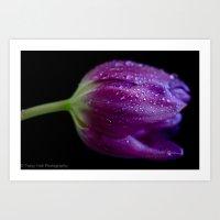 Passion for Purple  Art Print