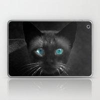 Siamese Blue Laptop & iPad Skin