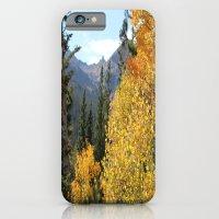 Autumn in the Rocky Mountains at Diamond Lake Trail, Eldora Colorado iPhone 6 Slim Case