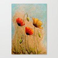 Three Poppies Canvas Print