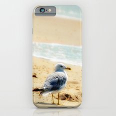 Lonely gull of summer. Slim Case iPhone 6s