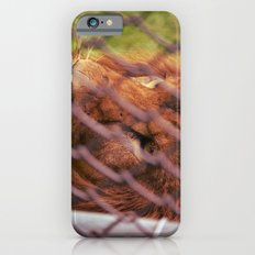 the imprisoned king Slim Case iPhone 6s