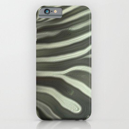 Zebra grazing iPhone & iPod Case