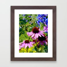 Purple Cone Flowers Framed Art Print