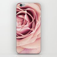 My Heart is Safe with You, My Friend - pale pink rose macro iPhone & iPod Skin