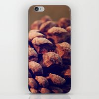 Pinecone iPhone & iPod Skin