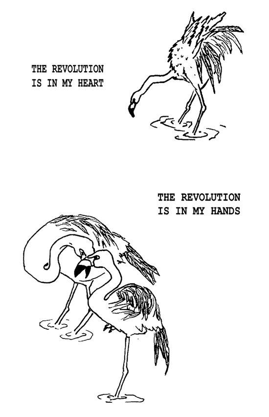 Revolutionary Flamingos Art Print