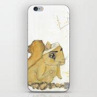 Love has it iPhone & iPod Skin