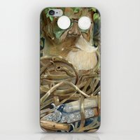 Birch  iPhone & iPod Skin