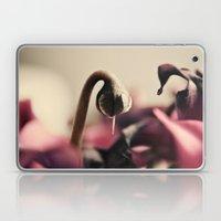Cyclamen Bud Laptop & iPad Skin