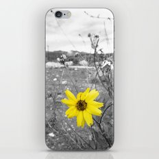 Stand Out  iPhone & iPod Skin