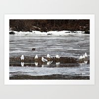 Walking On Water Art Print