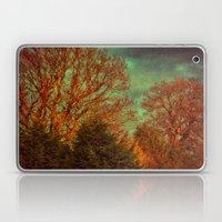 Trees, Trees, Trees Laptop & iPad Skin