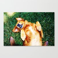 Playful Pup Canvas Print