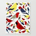 The birds from the colorful world Canvas Print