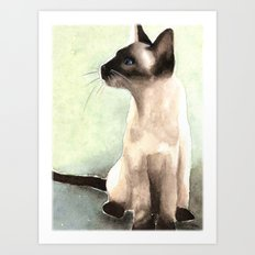 siamese cat Art Print