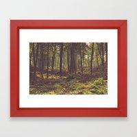 Forest by the Lake Framed Art Print